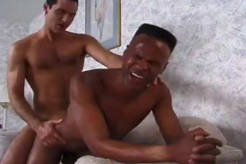 Winston Love And JR. Perez suck One some others Hard dick