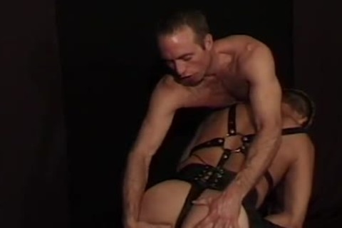 Leatthis guyr Wolf - Scene 3 - Macho man video