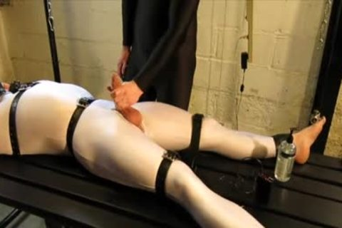 Our Live-in Pup Zathin Loooves To Be Tickled sort-of. So We Put Him In something Stretchy, strapped Him Down, And Decided To see How Much he Could Take! In Part 1, We Added A Sound-activated Electro Plug Just To Keep Things Interesting. Here In Part