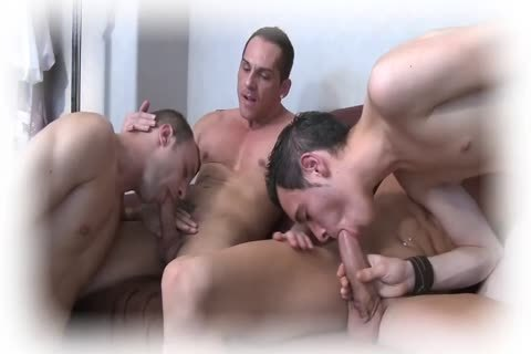 All Of these boys Are homo And Will Be pounded today