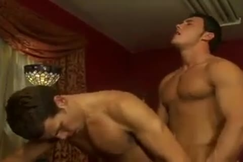 passionate pound In Office