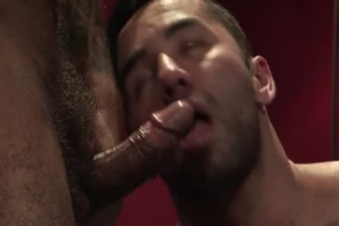 Muscle Bear butthole-copulation And Facial cum