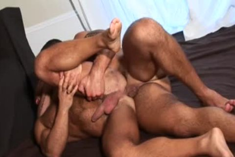 large penis Bear ass With Eating sperm