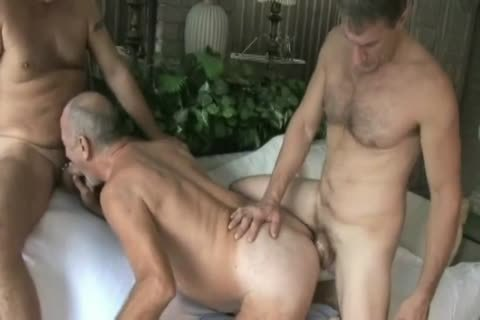 lusty Top Daddies two