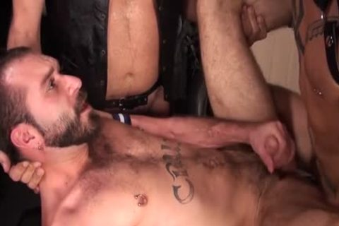big 10-Pounder Bear three-some And ejaculation