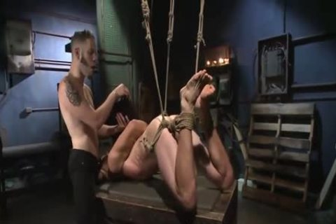 tasty Cop tied & Tormented