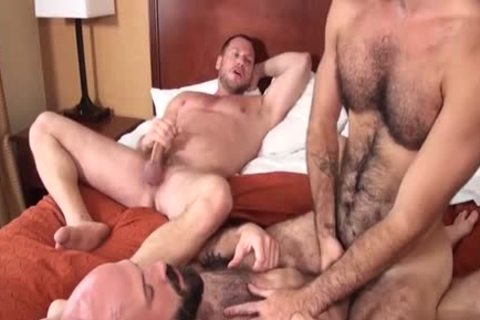 hairy Bear three-some And Creampie