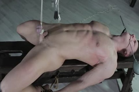 gorgeous man fastened Down, Balls Strung Up And Spanked