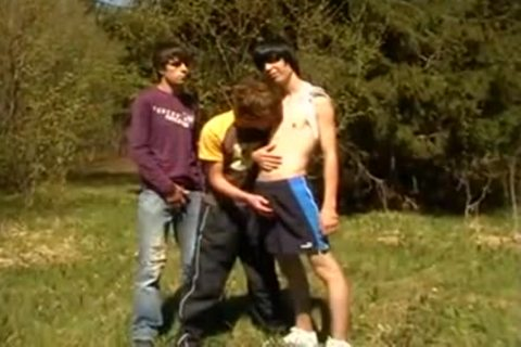 Outdoor threesome young homo legal age teenagers enjoyment