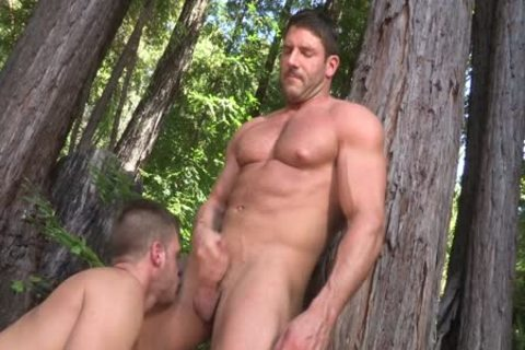 Jeremy Walker And Brian Bonds Forest engulf Off