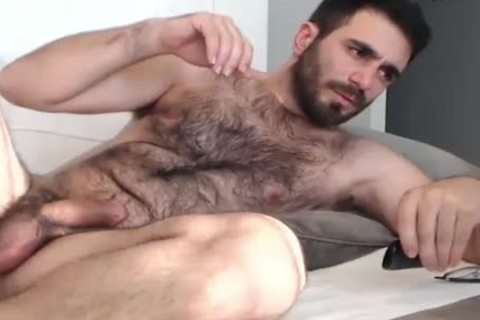 hairy Bear Wanks And sperm