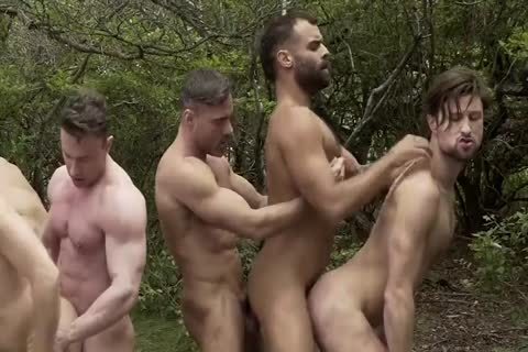 gay orgy In The Woods