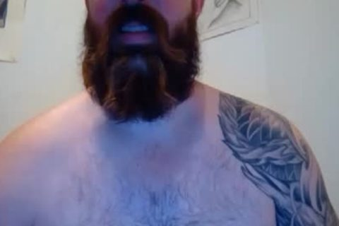 BEARDGAME227 IS LOOKING FOR A BEAR